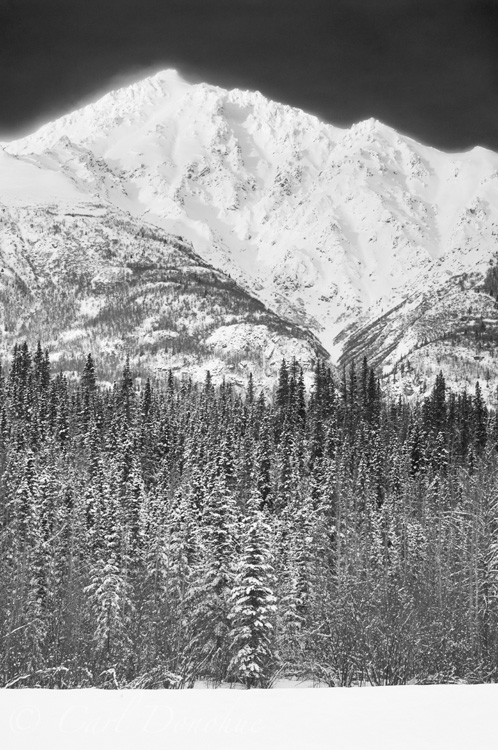 Black and white photo of an unnamed peak, in winter snow, and boreal forest, wintertime, near the Lakina River, Wrangell - St. Elias National Park, Alaska.
