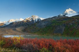 Dwarf Birch and fall colors, Ross Green Lake, Thompson Ridge, Wrangell St. Elias National Park, Alaska.