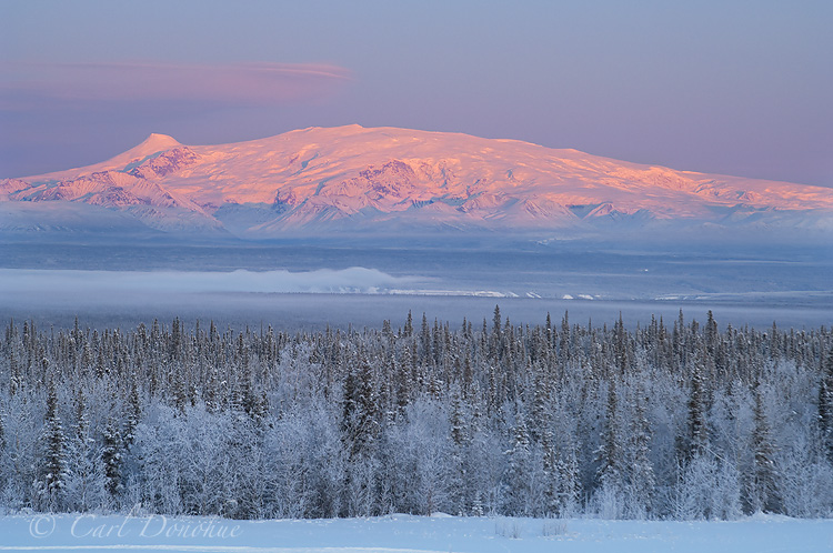 Photo of Mount Wrangell and Mount Zanetti, of the Wrangell Mountains. In winter the the mountains catch wonderful soft alpenglow, and the resulting colors are quite a sight. The snow covered trees of the frozen boreal forest add to the mood. Mount Wrangell, Mount Zanetti, over the Copper River Basin, Wrangell - St. Elias National Park and Preserve, Alaska.