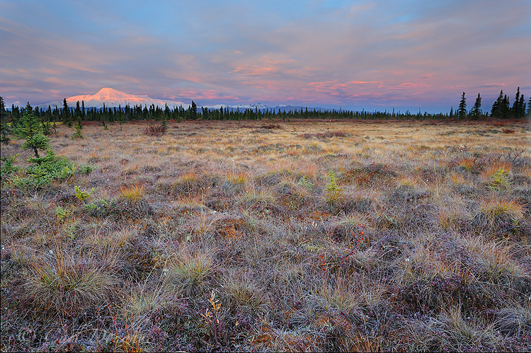 Sunrise over Mount Sanford, Wrangell - St. Elias National Park and Preserve, Alaska.