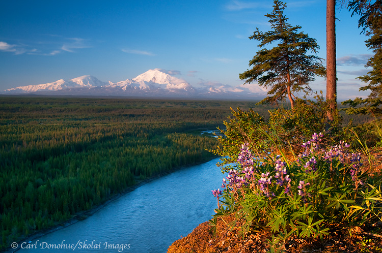 A view of the Wrangell mountains and the Copper River, from Simpson Hill near Glennallen, Alaska.